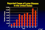 Reported Cases of Lyme Disease in the United State