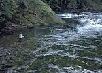 Recreationalist, Gayle Norman, fly fishing in a mo