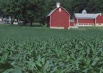 Century Farmstead in Dane County, Wisconsin.
