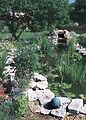 A variety of plants and a pond with circulating wa