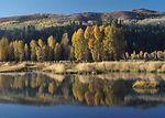 This restored wetland near Jackson, Wyoming will p