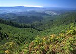 Overview of Tillamook watershed, Tillamook, Oregon