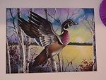 2002 Duck Stamp painting