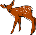 Illustration of a deer