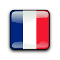 Illustration of a French flag button