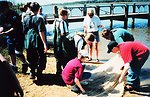 A middle school field trip to Kings Landing.  Inspecting content and sorting the catch of a seine net after dragging.
