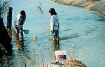 Searching for 'critters' with a small net in a side creek to the Patuxent River.