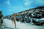 Hurricane Andrew - Boat stack storage facility destroyed by wind This structure was built with steel beams Boat damage total from Andrew approached $500 million