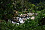 Panama stream