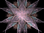 Star pattern fractal