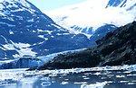 Glacier and small icebergs in Kenai Fjords