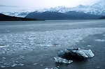 Bergy bits and small glacial ice chunks along tide rip line in Icy Bay.