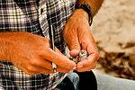 California least tern (CLT) gets its wing measurements