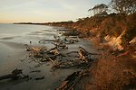 Aransas NWR shoreline