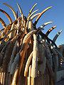 Ivory tusk tower