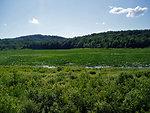 Erie National Wildlife Refuge