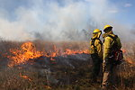 Prescribed burn at Sayville NWR