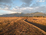 Kenai Nature Trail in Fall