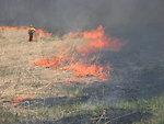 Controlled burn at Iroquois National Wildlife Refuge