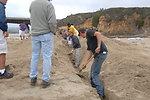 Pescadero Breach 8