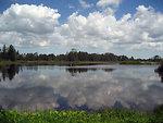 Reflections at Seney National Wildlife Refuge