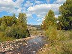 Riverine Habitat Restoration