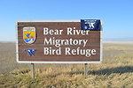 Bear River NWR