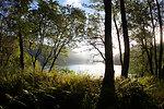 Uganik Lake View