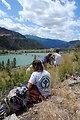 Week 6 project. Western Fence Lizard Survey in Perma, MT.