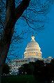 United States Capitol at Dusk