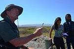 San Diego State University Dr. Mike Simpson teaches his botany class how to identify dune species