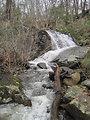 Photo of the Week - Waterfall (NJ)