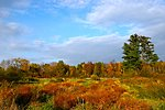 Photo of the Week - Fall Colors at Silvio O. Conte National Wildlife Refuge, MA