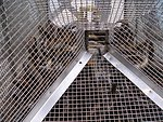 Sea Lamprey Portable Assessment Trap Funnel Entrance.
