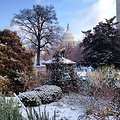 Winter morning on Capitol Hill view from Bartholdi Park