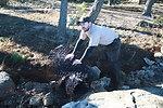 Beginning repairs at Stewart B. McKinney National Wildlife Refuge (CT)