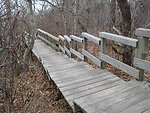 Morris Island Trail