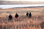 Hiking in the mixed grass prairie