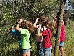 Girl Scout Birding Class