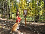 Evergreen Lakes Trail