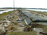 Hurricane damage at Chincoteague National Wildlife Refuge (VA)