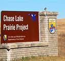 Wilson's Snipe on Chase Lake Prairie Project Sign