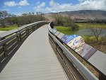 Boardwalk bridge, Kealia Pond, Hawaii