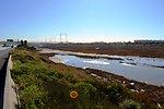Paradise marsh surrounded by urban development