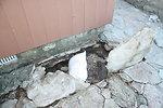Damage at Stewart B. McKinney National Wildlife Refuge (CT)