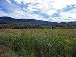 Cherry Valley National Wildlife Refuge