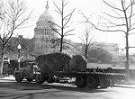 U.S. Capitol Christmas Tree - 1964