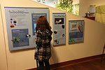 Student interacts with an exhibit