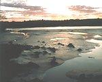 Penobscot River mudflat at low tide showing pattern of tidal streams.