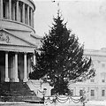 @capitoltree2012 arrives Capitol West Front Nov 26 10am (Pic: 1914 Tree on East Front).